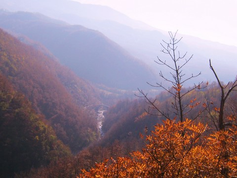 View of the Dolo valley in Autumn